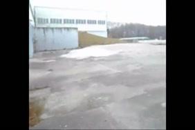 سكس مشترك فيديو